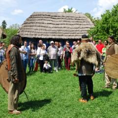 Festivalul Dacilor Liberi, Baia Mare, 2015